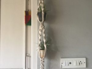 Macrame Double Plant Holder