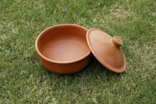Terracotta Designer Curd Setter