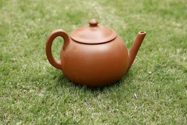 Terracotta Designer Tea Kettle